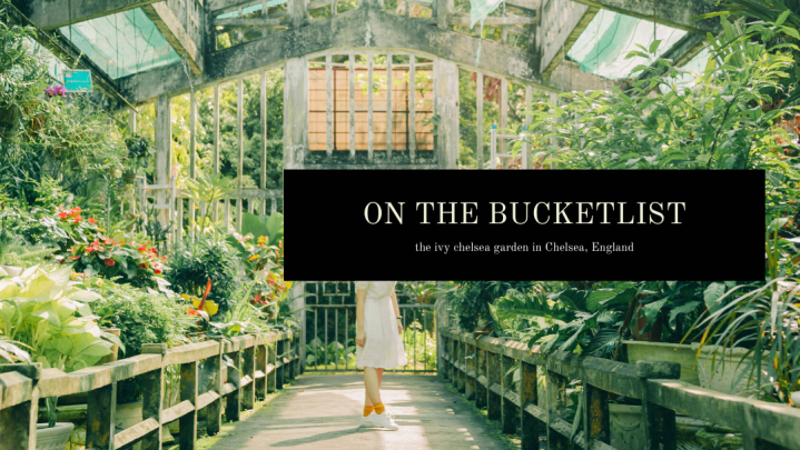 Bucket list: The Ivy Chelsea Garden